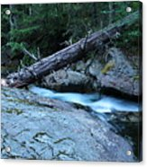 Log Over Deep Creek Acrylic Print