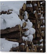 Log Row Acrylic Print