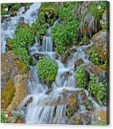 Logan Canyon Cascade Acrylic Print