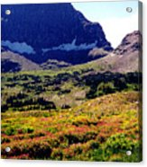 Logans Pass In Glacier National Park Acrylic Print