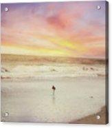 Lone Bird At Sunset Acrylic Print