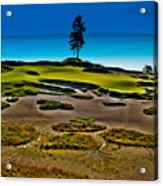 Lone Fir - Hole #15 At Chambers Bay Acrylic Print