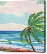 Lone Palm On The Beach Acrylic Print