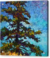 Lone Pine II Acrylic Print by Marion Rose