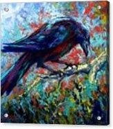 Lone Raven Acrylic Print