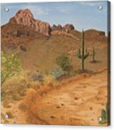 Lone Saguaro In Desert Acrylic Print