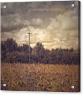 Lone Telephone Pole In Autumn Field Acrylic Print
