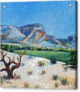 Lone Tree At The Ghost Ranch Acrylic Print