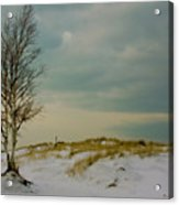 Lone Tree-horizontal Acrylic Print