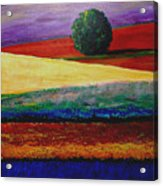 Lone Tree In Flower Fields Of Provence Acrylic Print