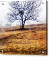 Lone Tree On Hill In Winter Acrylic Print