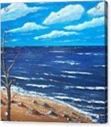 Lone Tree Seascape Acrylic Print