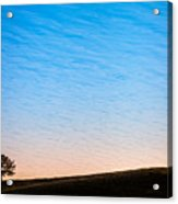 Lone Tree Sunrise Acrylic Print