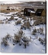 Lonely Bodie Acrylic Print