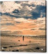 Lonely Couple  Acrylic Print