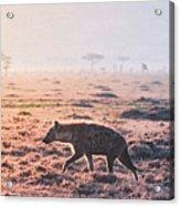 Lonely Hunter Acrylic Print