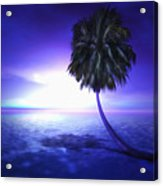 Lonely Pine Acrylic Print by Monroe Snook