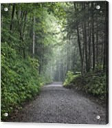 Lonely Road Acrylic Print