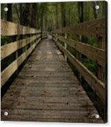 Long Boardwalk Through The Wetlands Acrylic Print
