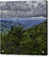 Long Misty Days Acrylic Print