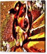 Lonnie, 2016 Poster Effec 1a Acrylic Print