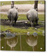 Look At The Best Parts Acrylic Print