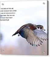 Look At The Birds Acrylic Print