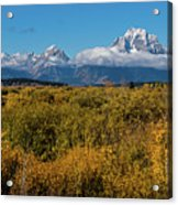 Looking Across Willow Flats To Mt Moran Acrylic Print