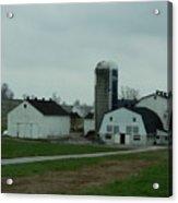 Looking Down An Amish Lane Acrylic Print