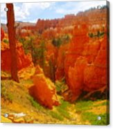 Looking Down In Bryce Acrylic Print