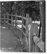 Looking Down The Fence Acrylic Print