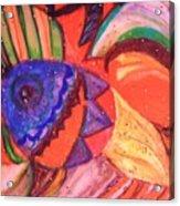 Looking For A Rainbow Acrylic Print