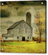 Looking For Dorothy Acrylic Print by Lois Bryan