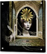 Looking In Acrylic Print