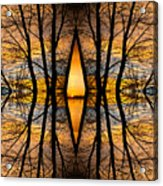 Looking Through The Trees Abstract Fine Art Acrylic Print