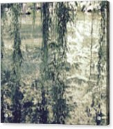 Looking Through The Willow Branches Acrylic Print