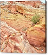 Looking Up From Wash 3 In Valley Of Fire Acrylic Print