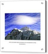 Looking Upward Acrylic Print