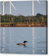 Loon And Windmills Acrylic Print