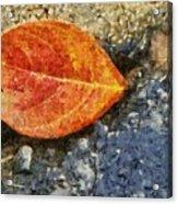 Loose Leaf Acrylic Print