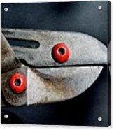 Lopper Bird Acrylic Print