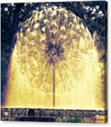 Loring Fountain Acrylic Print by Rashelle Brown