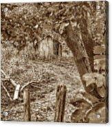 Lost Barn S Acrylic Print