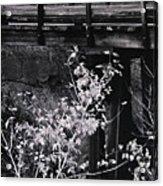 Lost Bridge Acrylic Print