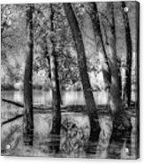Lost Acrylic Print