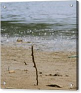 Lost Message In A Bottle 2 Acrylic Print