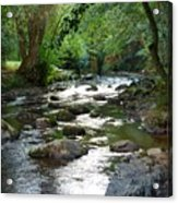 Lost River Acrylic Print