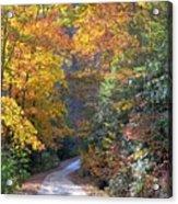 Lost Road Acrylic Print by Bob Jackson