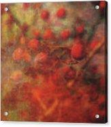Lost Vintage Crabapples 5942 Ldp_2 Acrylic Print