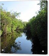 Lost Waterway Acrylic Print